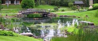 Ландшафтный дизайн частного двора, фото